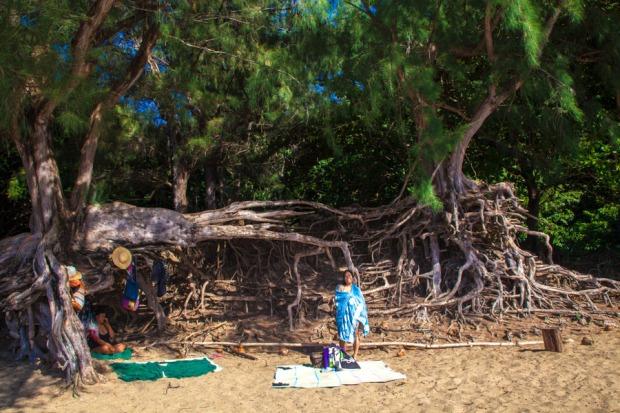 Hawaii-2016-5023.jpg