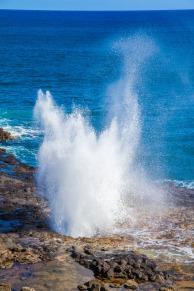 hawaii-2016-5169